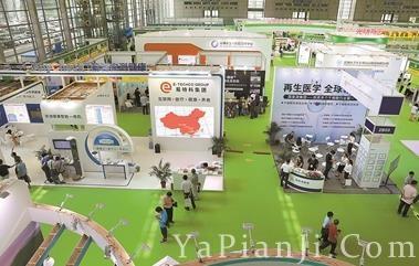 生物和生命健康产业博览会四大展区展示前沿成果